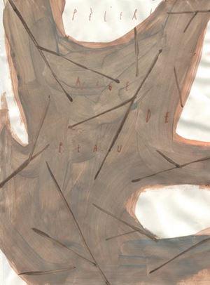 Pelerinage de peau by Arpaïs Du Bois contemporary artwork