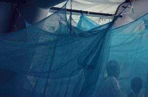 Under the blue skies of Agok #4 by Alec Von Bargen contemporary artwork