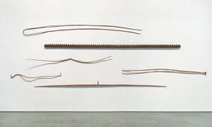 Some Tales by Martin Puryear contemporary artwork