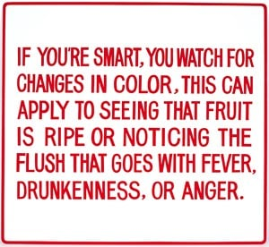 If you're smart, you watch for changes …  by Jenny Holzer contemporary artwork mixed media