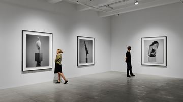 Contemporary art exhibition, Hiroshi Sugimoto, Past Presence at Marian Goodman Gallery, New York