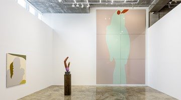 Contemporary art exhibition, Gary Hume, Looking and Seeing at Barakat Contemporary, Seoul