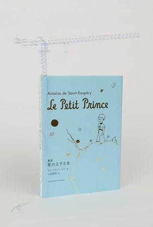 Tectonic Model (Antoine de Saint-Exupéry's 'Le Petit Prince') by Takahiro Iwasaki contemporary artwork