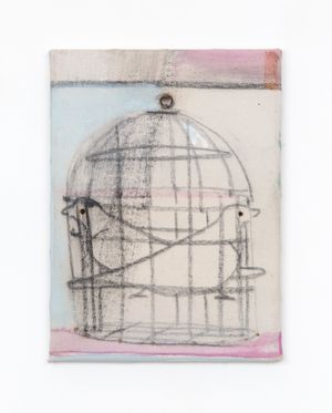 Birdcage by Merlin James contemporary artwork painting