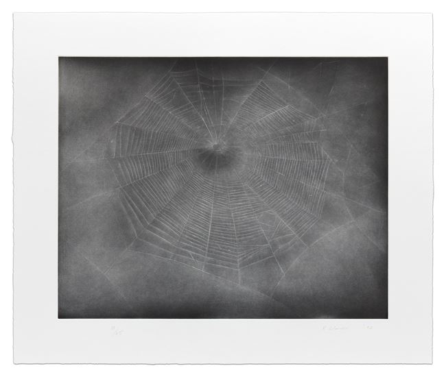 Untitled (Web 3) by Vija Celmins contemporary artwork