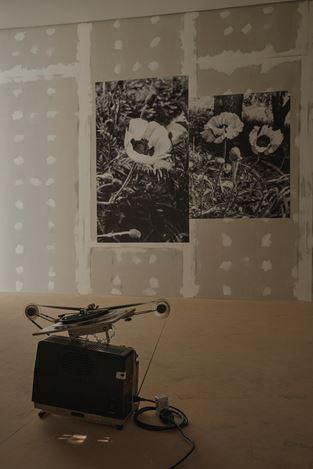 Exhibition view:Antonio Menchen, el ojo es el primer círculo, Luis Adelantado, Valencia (30 January–12 April 2021). Courtesy Luis Adelantado Valencia. Photo: David Zarzoso.