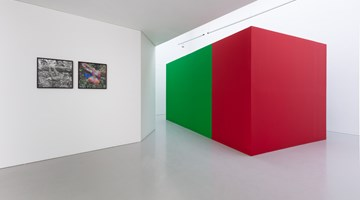 Contemporary art exhibition, Ben Rivers, Now, at last! at Kate MacGarry, London