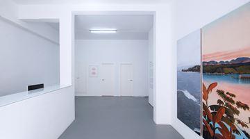 Contemporary art exhibition, Group Exhibition, Ver versus ver at Sabrina Amrani, Sallaberry, 52, Madrid, Spain