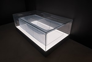 Specimen Series: 348 West 22nd Street, APT. New York, NY 10011, USA - Bathtub by Do Ho Suh contemporary artwork