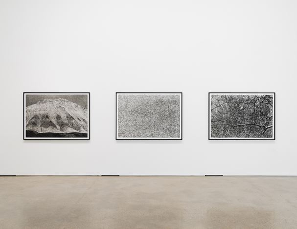 Jungjin Lee,Voice 1, PKM Gallery, Seoul(15 January–5 March 2020. Courtesy the artist and PKM Gallery.