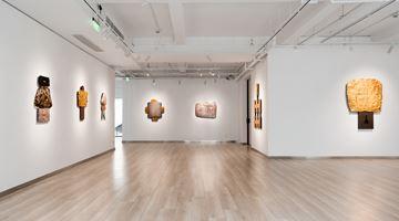 Contemporary art exhibition, Wensen Qi, Wandering at Galerie Dumonteil, Shanghai