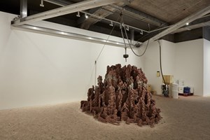 Beautiful Minds by Anya Gallaccio contemporary artwork