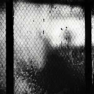 Bathroom Window (Broadway Studio) by Robert Rauschenberg contemporary artwork