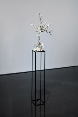 Tree by Caroline Rothwell contemporary artwork
