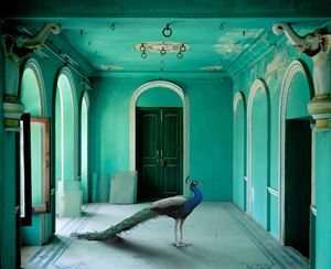 The Queen's Room, Zanana, Udaipur City Palace by Karen Knorr contemporary artwork