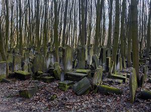 Untutled (Warszawa) by Bernhard Prinz contemporary artwork