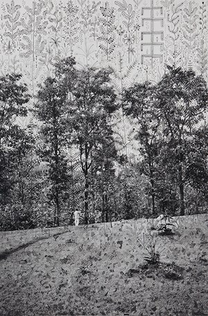 A Forest of Trees, from the series 'Fields of Sight' by Gauri Gill contemporary artwork painting