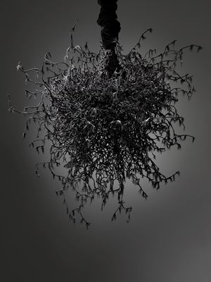 Untitled #1459 (Yōko Ogawa: The Memory Police) by Petah Coyne contemporary artwork