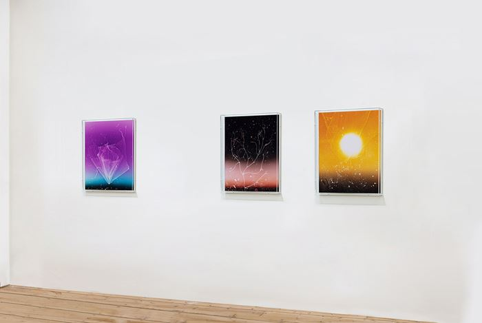 Exhibition view: Anne Hardy,Rising Heat, Maureen Paley (18 February–28 March 2021). Courtesy Maureen Paley.