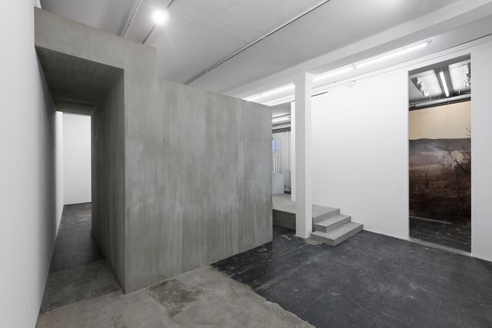 Exhibition view: Cristian Rusu, The Only Thing I Am Sure About in this Life Lies Above My Head, Galeria Plan B, Berlin (6 March–11 April 2020). Courtesy Galeria Plan B.