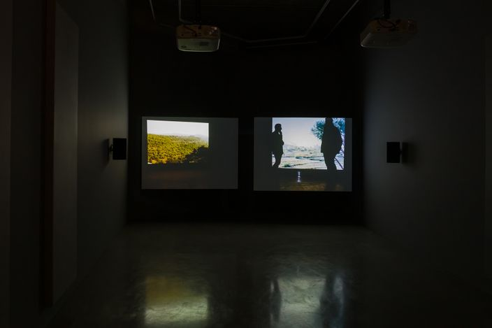Lawrence Abu Hamdan Once Removed, HD video, colour, sound, 30 minutes, 2019installation view, Maureen Paley, London, 2020