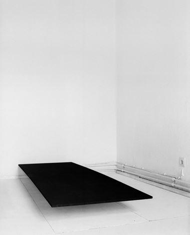 Becky Beasley,Trap II (2010). Gelatin silver print. 32 x 24 cm. Courtesy Galeria Plan B.