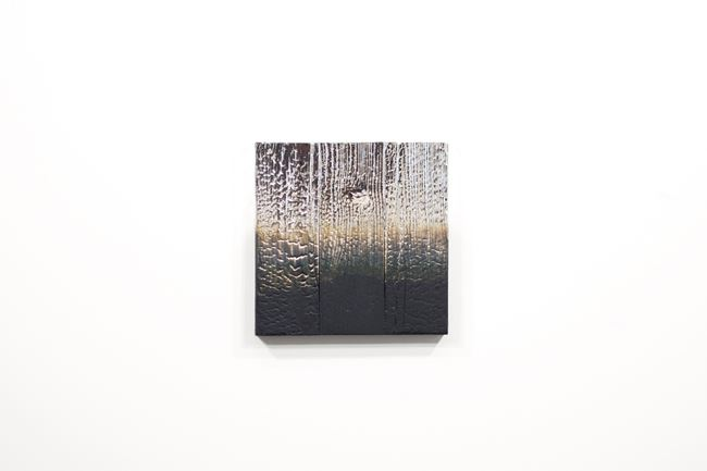 Alchemy (Shou Sugi Ban) 1.20.12.12.5 by Miya Ando contemporary artwork