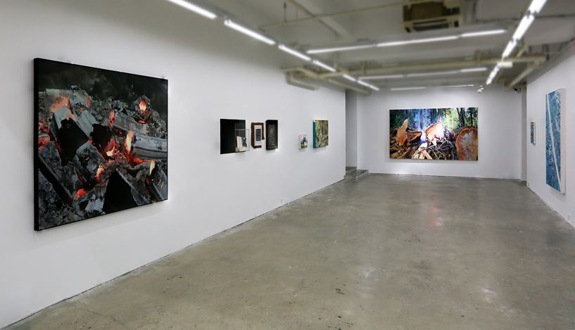 Exhibition view: Ma Wenting, To The Wild,A Thousand Plateaus Art Space, Chengdu (12 August–16 October 2018). Courtesy A Thousand Plateaus Art Space.