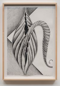 Fossil #8 by Faith Wilding contemporary artwork works on paper, drawing