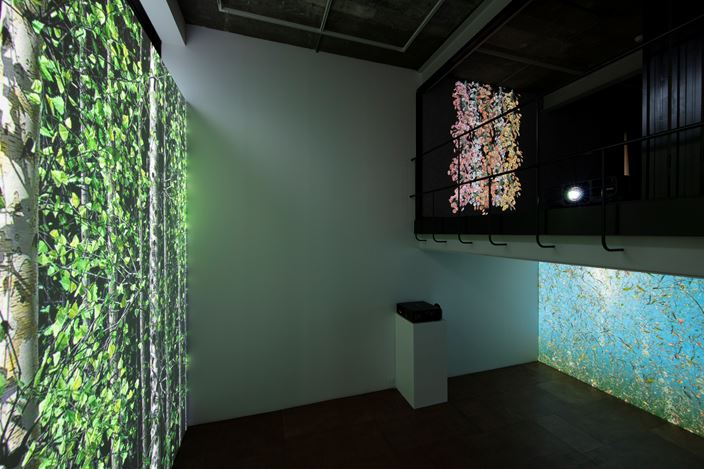 Exhibition view: Jennifer Steinkamp,Souls, Lehmann Maupin, Seoul (3 September–31 October 2020). Courtesy the artist and Lehmann Maupin, New York, Hong Kong, Seoul, and London.Photo: OnArt Studio.