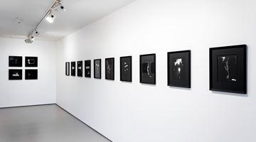 Contemporary art exhibition, Joyce Campbell, Joyce Campbell at Bartley & Company Art, Wellington