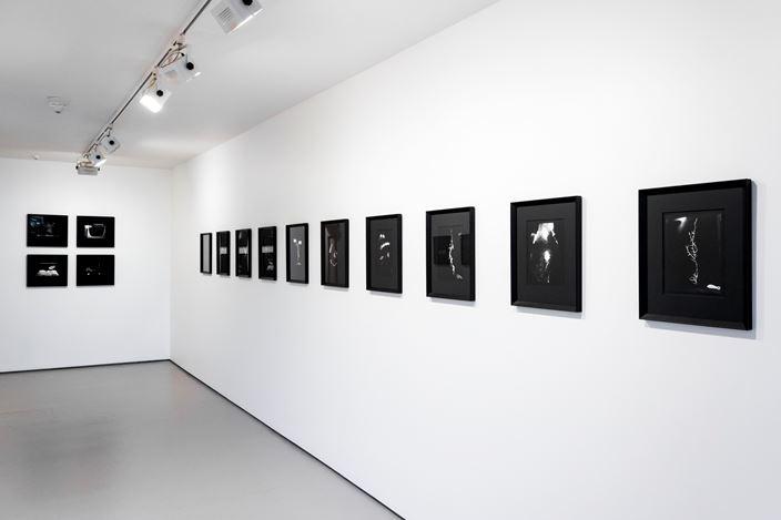 Exhibition view: Joyce Campbell, Bartley + Company Art, Wellington (14 August–7 September 2019). Courtesy Bartley + Company Art.