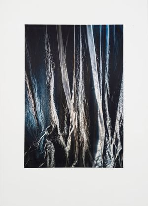 Untitled (3183) by Elisa Sighicelli contemporary artwork
