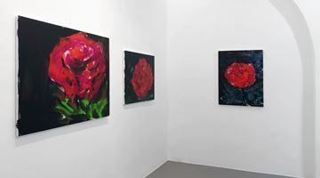 Contemporary art exhibition, Herbert Brandl, Bilderbuch Bilderbogen at Galerie nächst St. Stephan Rosemarie Schwarzwälder, Vienna