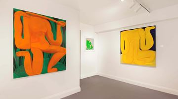 Contemporary art exhibition, Tahnee Lonsdale, Tender Loin at Dellasposa Gallery, London