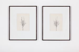 Pair of Winter Drawings 16vs17 and 16vs20, 26 December 2015 by Peter Liversidge contemporary artwork painting, works on paper