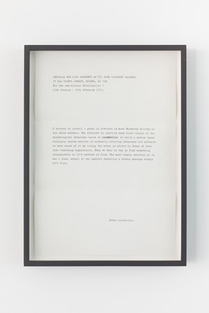 Proposal for Kate MacGarry by Peter Liversidge contemporary artwork