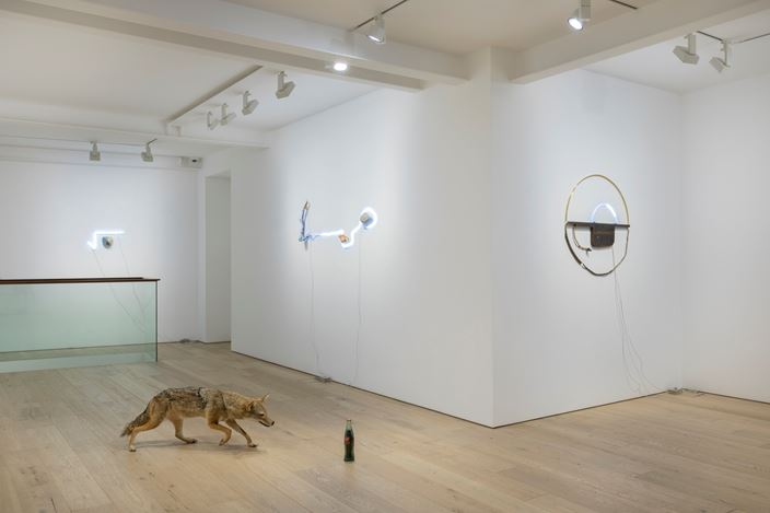 Exhibition view: Gabriel Rico, The Stone, The Branch and The Golden Geometry, Perrotin, Seoul (11 July–7 September 2019). © Courtesy the artist and Perrotin. Photo: Youngha Jo.