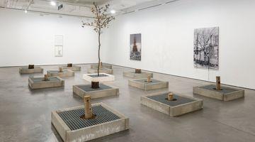 Contemporary art exhibition, Carlos Garaicoa, Scratched Surfaces, as Diamond against Crystal at Goodman Gallery, London, United Kingdom