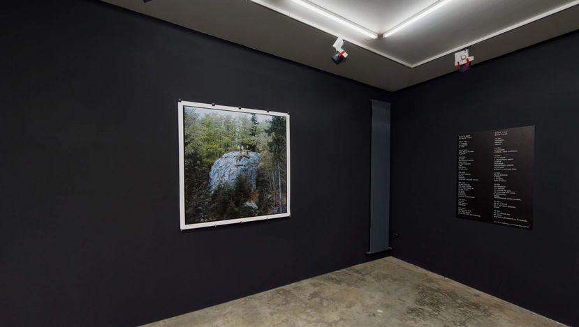 Exhibition view: Manca Juvan & Bojan Brecelj,Back to Eden,Galerija Fotografija, Ljubljana(25 January–27 February 2021). Courtesy Galerija Fotografija.
