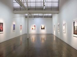 "Pat Brassington<br><em>Nonetheless</em><br><span class=""oc-gallery"">Arc One Gallery</span>"