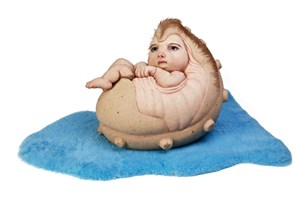 The Rookie by Patricia Piccinini contemporary artwork