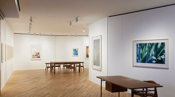 Contemporary art exhibition, Ittetsu Matsuoka, Yasashiidake at Taka Ishii Gallery Photography / Film, Photography / Film, Tokyo