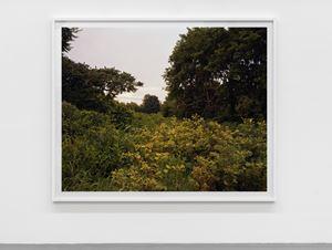 July 17, 2006The East Meadows, Northampton, Massachusetts by Joel Sternfeld contemporary artwork