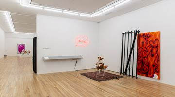 Contemporary art exhibition, Hadi Fallahpisheh, BLOW-UPS at Andrew Kreps Gallery, 22 Cortlandt Alley, USA