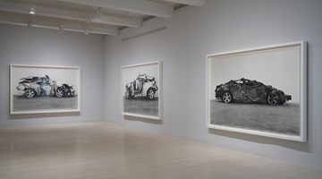 Contemporary art exhibition, Richard Learoyd, Curious at Pace Gallery, 32 East 57th Street, New York