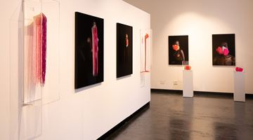Contemporary art exhibition, Group Exhibition, The Mask Project at THK Gallery , Cape Town