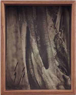 Detail (Collodion 1) by Martin Soto Climent contemporary artwork