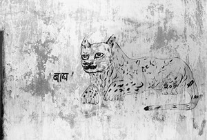 Untitled (1), from the series ' The Mark on the Wall' by Gauri Gill contemporary artwork