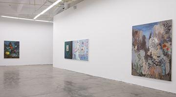 Contemporary art exhibition, Ji Lei, Trans-land·Shanshui at A Thousand Plateaus Art Space, Chengdu, China